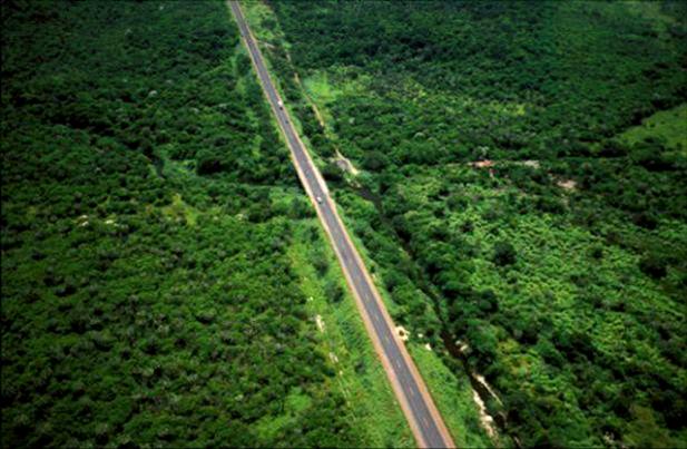carretera-amazonas